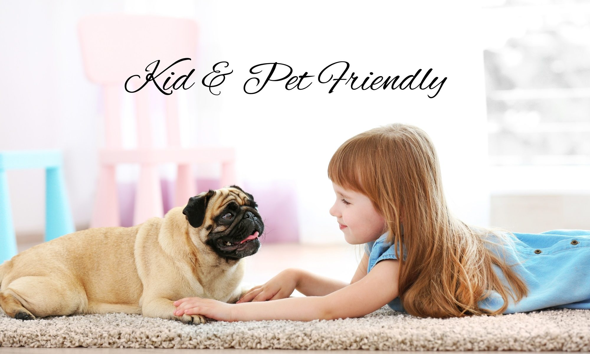 Our Services are Kid & Pet Friendly